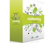 Kit Colecionar